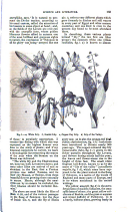 Página 165