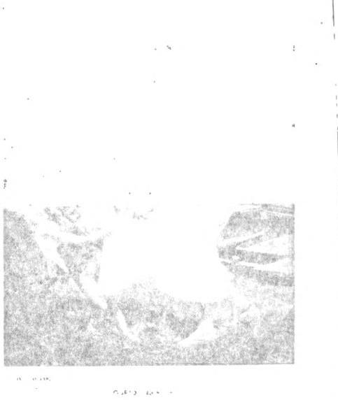 [merged small][merged small][ocr errors][ocr errors][graphic]