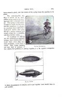 Página 765